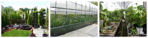 広い農場で管理する豊富な種類