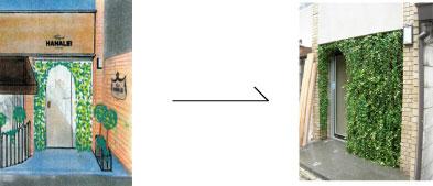 グリーンレンタル ディスプレイ 観葉植物レンタル販売 アガベ・ストリクター吹上