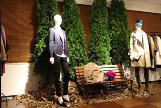 観葉植物レンタル グリーンレンタル 室内演出 秋のディスプレイ