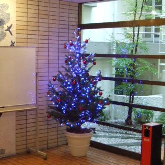 クリスマス・シーズン グリーンレンタル