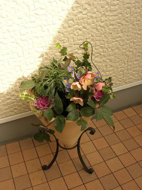 フラワーレンタル 花の寄植 販売 季節の寄植え グリーンレンタル