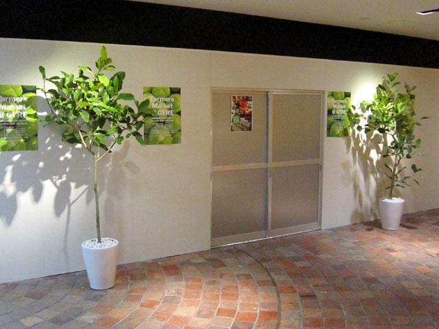 魅力的な観葉植物 展示会 販売 自然な雰囲気 グリーンレンタル