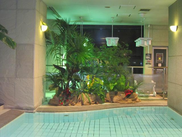 リラクゼーション空間インテリアグリーン ディスプレイ 植物レンタル リース
